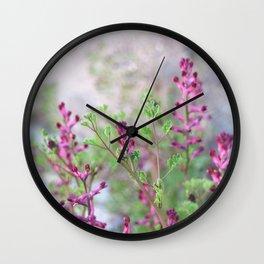 Pink flowers. Botanical garden. Fumitory. Earth Smoke. Wall Clock