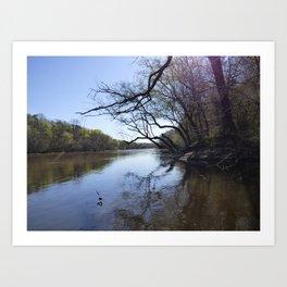 Cape Fear River Art Print