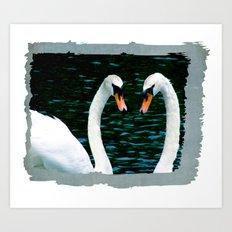 Swan Meet Art Print