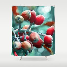 SICILIAN FRUITS Shower Curtain