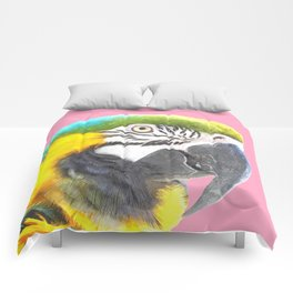 Macaw Portrait Pink Background Comforters