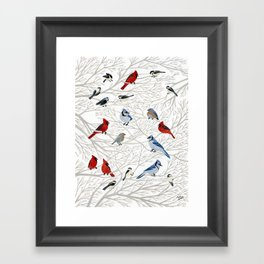 Winter Birds Framed Art Print