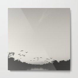 Flying Geese  Metal Print