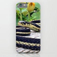 Garter Snake, High Park Gardens iPhone 6s Slim Case