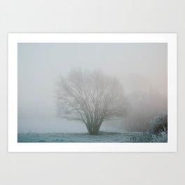 Tree in Winter Morning Mist Art Print