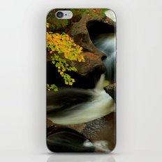 Fall from the Bridge iPhone & iPod Skin