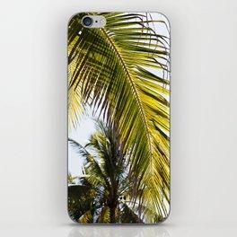 Pretty Palm iPhone Skin