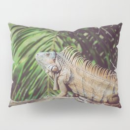Iggy Pillow Sham