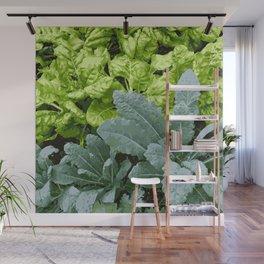 Healthy Lettuce Leaves Vector Illustration Wall Mural