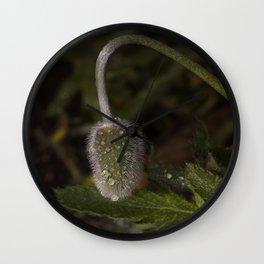 Raindrop Poppy Wall Clock
