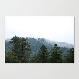 Spook Forest Canvas Print