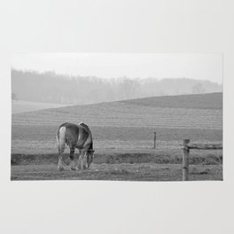Draft Horse in the Field Rug