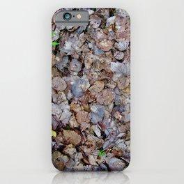 Last Years Fallen Foliage iPhone Case