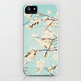Spring Willows iPhone Case