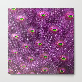 Purple Peacock Feathers Metal Print