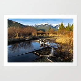 Vermilion Lakes Autumn - Banff Art Print