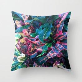 Variegated Coleus Throw Pillow