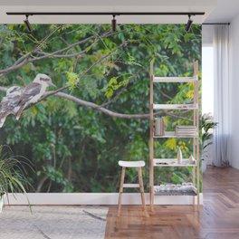 Kookaburras Wall Mural