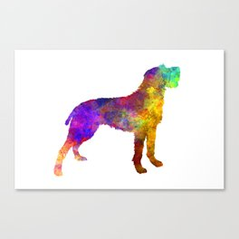 Bohemian Wirehaired Pointing Griffon in watercolor Canvas Print