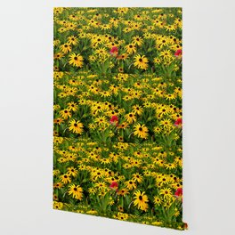 Yellow Flowers Black Eyed Susan and Red Wallpaper
