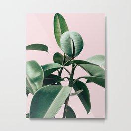 Plant, Green, Leaf, Pink, Minimal, Trendy decor, Interior, Wall art, Photo Art Print Metal Print