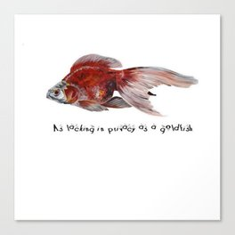 As Lacking In Privacy As A Goldfish Canvas Print