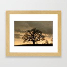 Solo Tree Framed Art Print