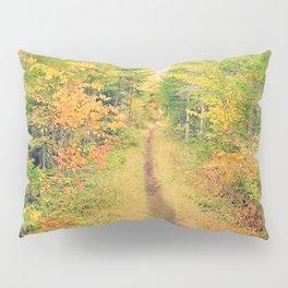 Follow the Trail 2: Adirondack Park in Autumn Pillow Sham