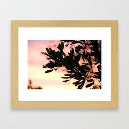 silver lake sunset Framed Art Print