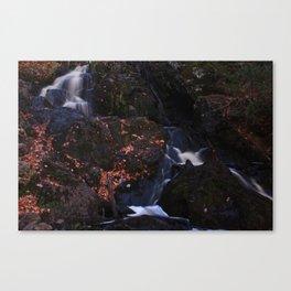 Waterfall Wyandotte Falls, MI Canvas Print