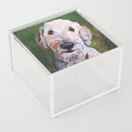 Goldendoodle Acrylic Box