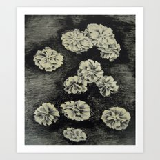 Flowers - lithography Art Print