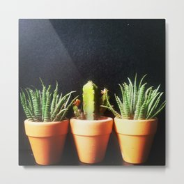 Mini Plants Pots Metal Print