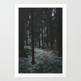 Moody Forrest in Norway Art Print