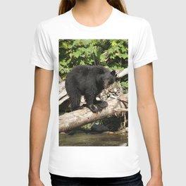 The Fisherman- Black Bear and Stream T-shirt
