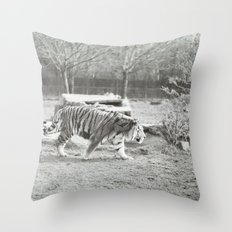On the prowl... Throw Pillow