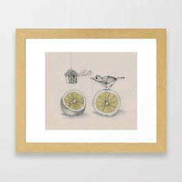 Lemon bird Framed Art Print
