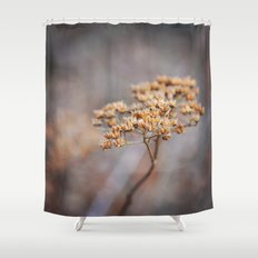Dried Up Shower Curtain