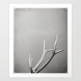 fig. 01   antlers Art Print
