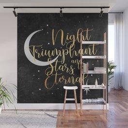 Night and Stars - ACOWAR Wall Mural