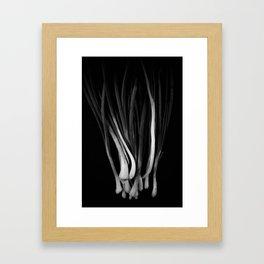 Onion Framed Art Print