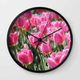 Field of Pink Tulips Wall Clock
