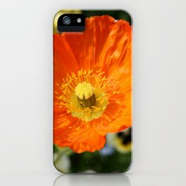 Orange Glowing Poppy by Mandy Ramsey, Haines, Alaska iPhone Case