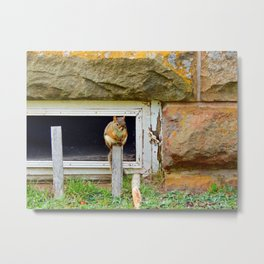 Church Squirrel Metal Print