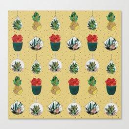 Gold Festive Succulents Canvas Print