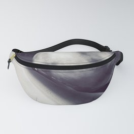 Discovery Fanny Pack
