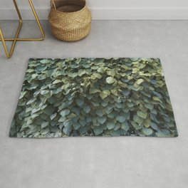 Green Leaves at the End of Summer Rug