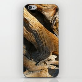 Bristlecone Pine iPhone Skin