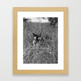 Stealth mode Framed Art Print