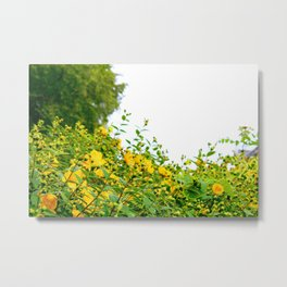 Happy Flowers Metal Print